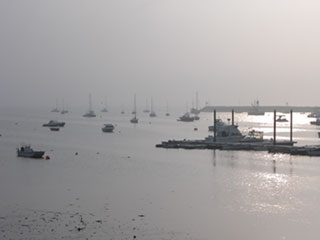 Foggy morning at Provincetown Harbor