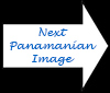 Richard L. Becker's Images of Panama