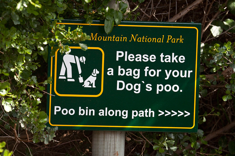 Clean up Dog Poo, Boulders Beach, Table Mountain National Park, South Africa