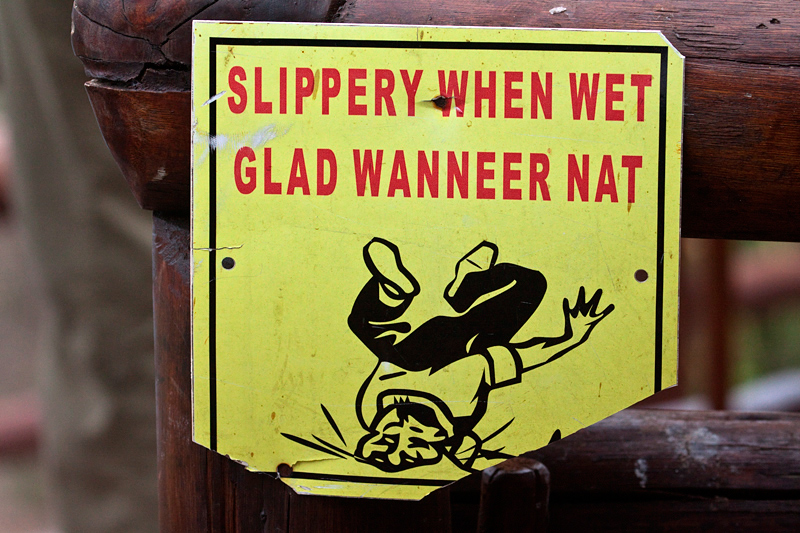 Slippery When Wet, en route Olifant's to Letaba Rest Camp, Kruger National Park, South Africa
