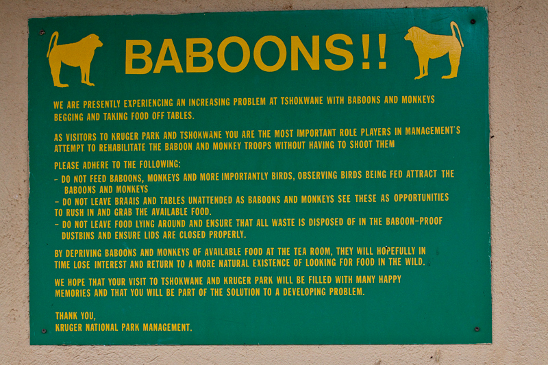 Baboon Sign, Tshokwane Picnic Site, Kruger National Park, South Africa
